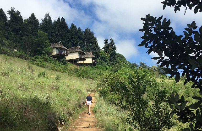 The buddhist retreat centre
